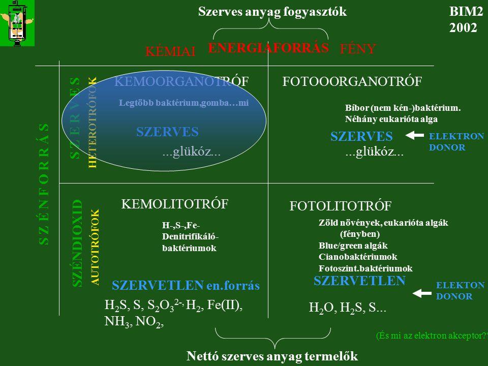 A mikrobaszaporodás alapösszefüggései BIM SB 2001 LIMITÁLÓ SZUBSZTRÁT FOGALMA  max SCSC S kr C S0CS0C C-forrás ~ FERM.IDEJE  max SNSN S kr N S0NS0N N-forrás ~ FERM.IDEJE  max  SOSO S kr O S0OS0O O2O2 ~ FERM.IDEJE  max SVSV S kr V S0VS0V VITAMIN -forrás ~ FERM.IDEJE MELYIK S LESZ LIMITÁLÓ S ???