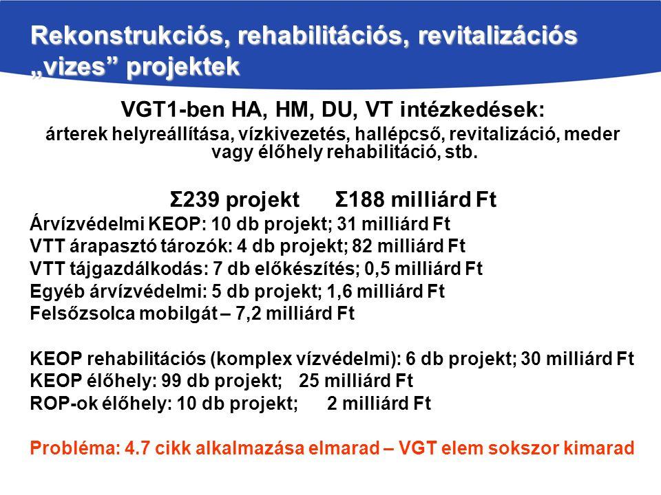 """Rekonstrukciós, rehabilitációs, revitalizációs """"vizes projektek VGT1-ben HA, HM, DU, VT intézkedések: árterek helyreállítása, vízkivezetés, hallépcső, revitalizáció, meder vagy élőhely rehabilitáció, stb."""