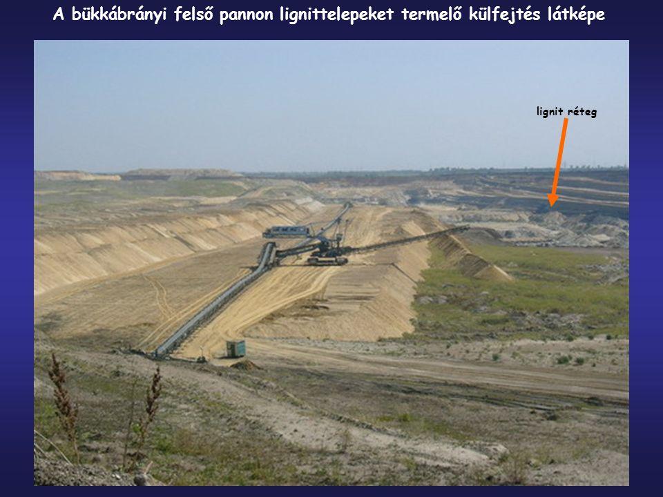 lignit réteg A bükkábrányi felső pannon lignittelepeket termelő külfejtés látképe
