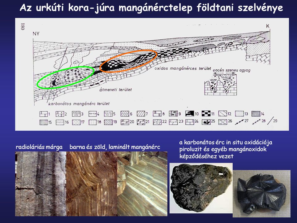 Az urkúti kora-júra mangánérctelep földtani szelvénye radioláriás márgabarna és zöld, laminált mangánérc a karbonátos érc in situ oxidációja piroluzit és egyéb mangánoxidok képződéséhez vezet