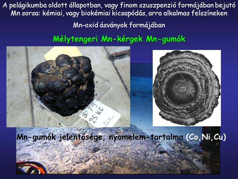 A pelágikumba oldott állapotban, vagy finom szuszpenzió formájában bejutó Mn sorsa: kémiai, vagy biokémiai kicsapódás, arra alkalmas felszíneken Mn-oxid ásványok formájában Mélytengeri Mn-kérgek Mn-gumók Mn-gumók jelentősége, nyomelem-tartalma (Co,Ni,Cu)