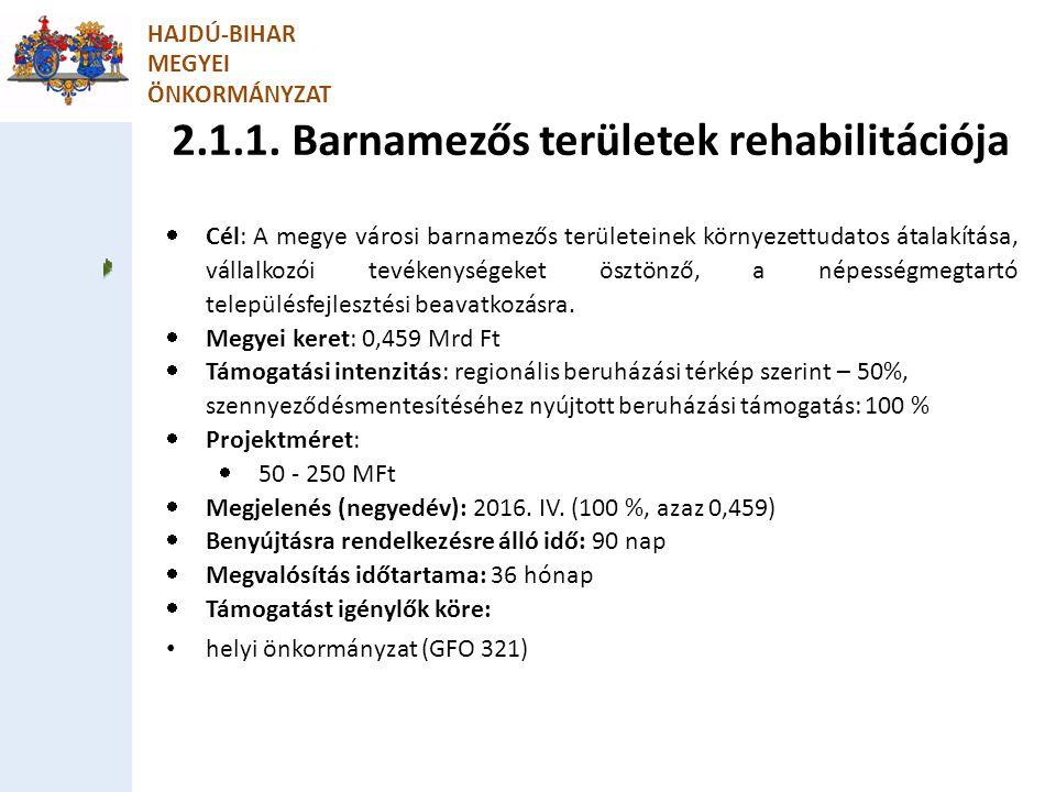 2.1.1. Barnamezős területek rehabilitációja HAJDÚ-BIHAR MEGYEI ÖNKORMÁNYZAT  Cél: A megye városi barnamezős területeinek környezettudatos átalakítása