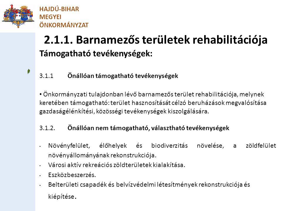 2.1.1. Barnamezős területek rehabilitációja HAJDÚ-BIHAR MEGYEI ÖNKORMÁNYZAT Támogatható tevékenységek: 3.1.1Önállóan támogatható tevékenységek Önkormá