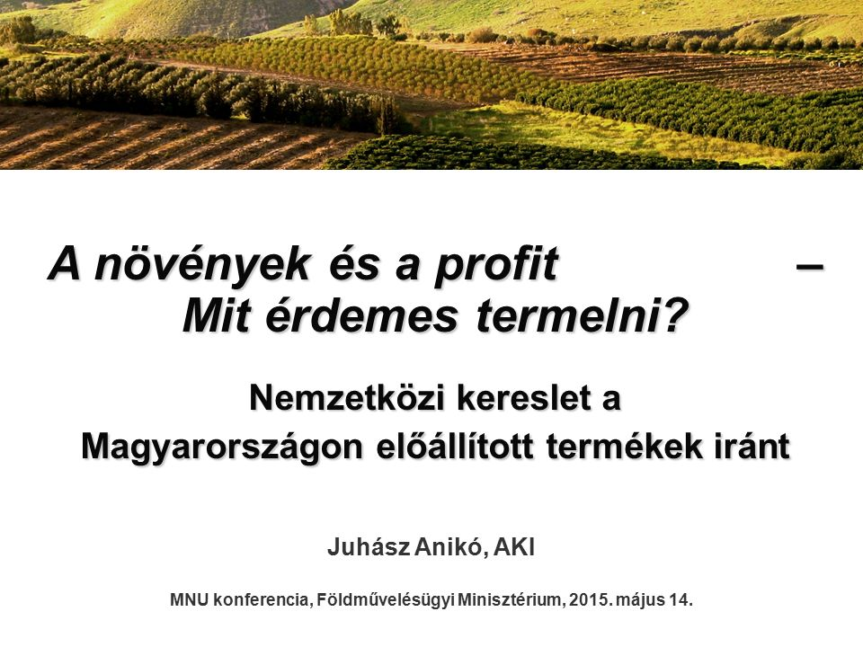 A növények és a profit – Mit érdemes termelni? Nemzetközi kereslet a Magyarországon előállított termékek iránt Juhász Anikó, AKI MNU konferencia, Föld