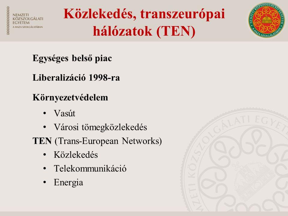 Közlekedés, transzeurópai hálózatok (TEN) Egységes belső piac Liberalizáció 1998-ra Környezetvédelem Vasút Városi tömegközlekedés TEN (Trans-European