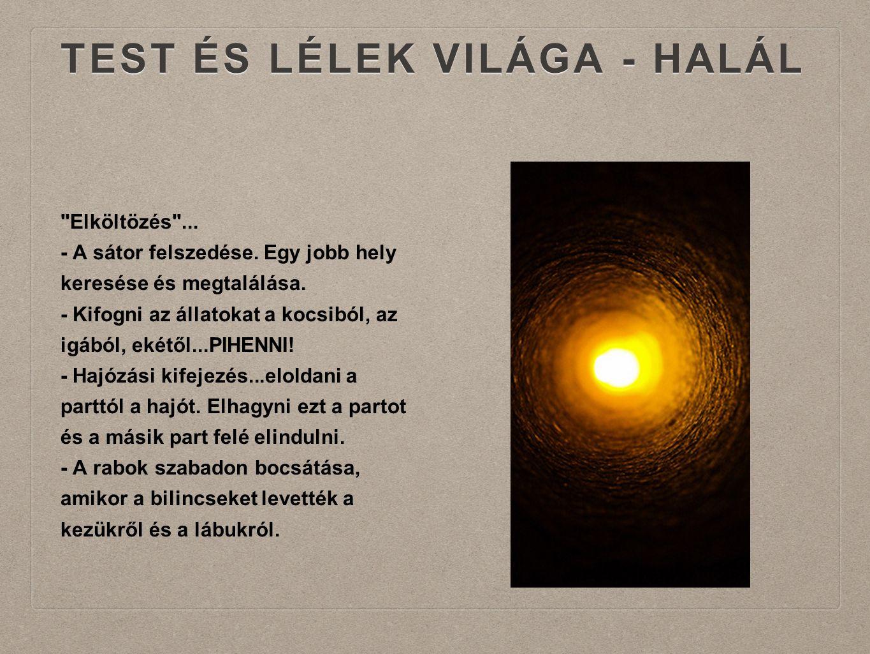 TEST ÉS LÉLEK VILÁGA - HALÁL