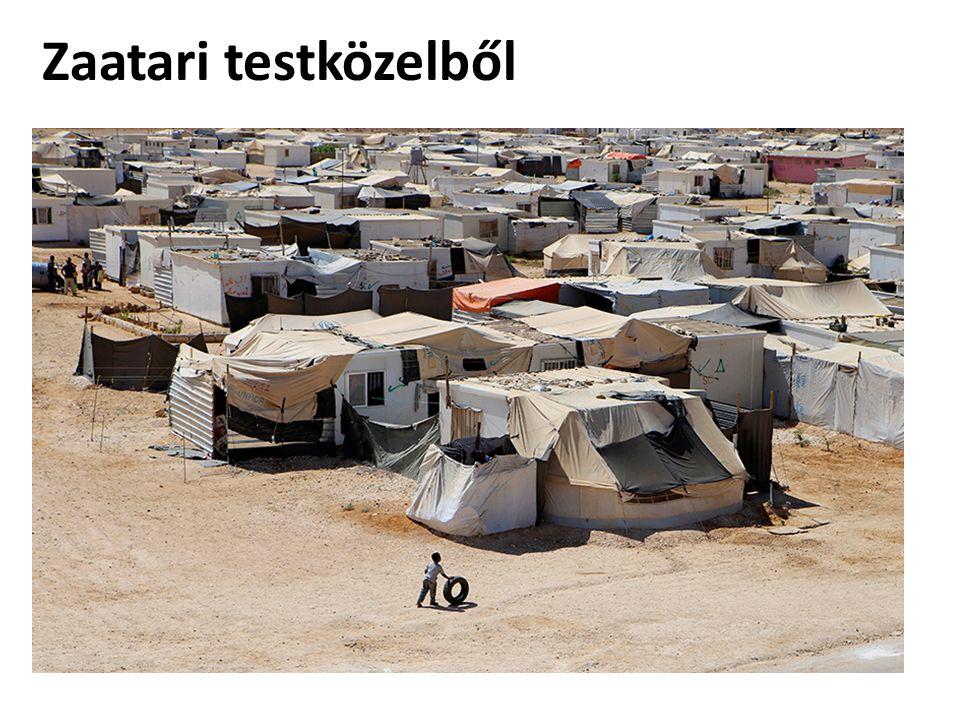 Zaatari testközelből