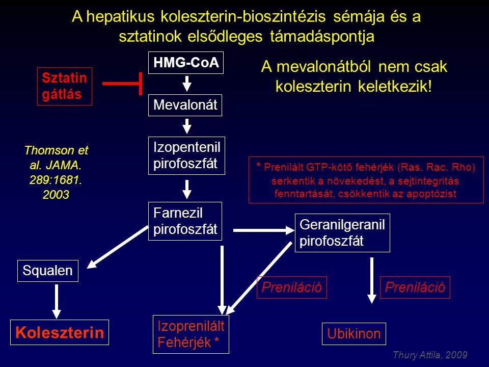 Thury Attila, 2009 A mevalonátból nem csak koleszterin keletkezik.