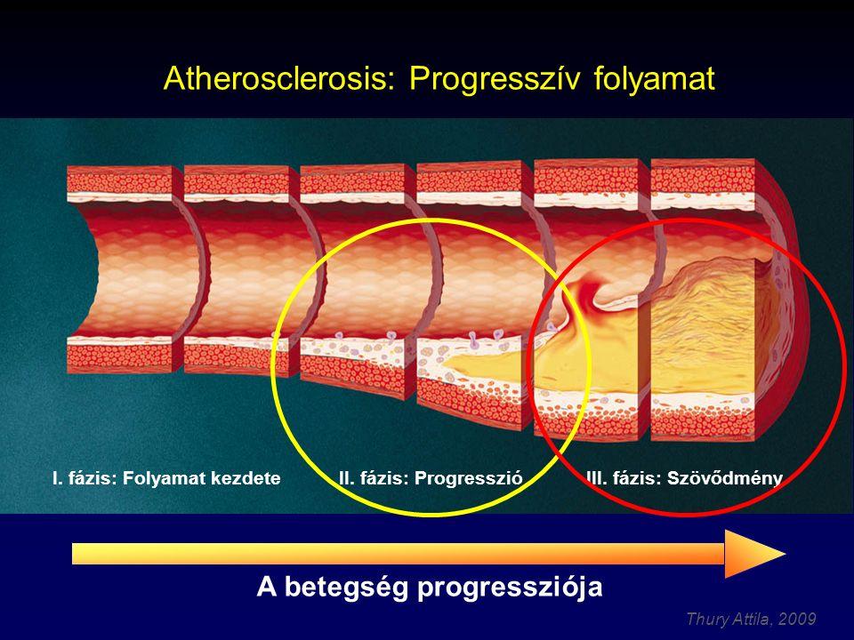 Thury Attila, 2009 IVUS-szal vizsgálhatók az atherosclerosis stádiumai, mértéke