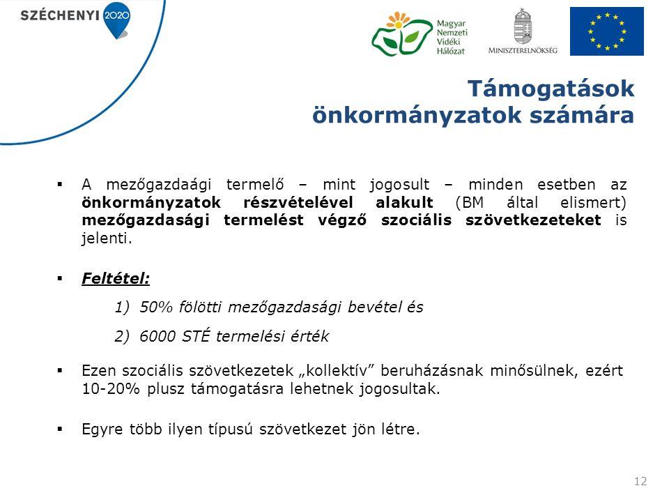 Támogatások önkormányzatok számára  A mezőgazdaági termelő – mint jogosult – minden esetben az önkormányzatok részvételével alakult (BM által elismert) mezőgazdasági termelést végző szociális szövetkezeteket is jelenti.