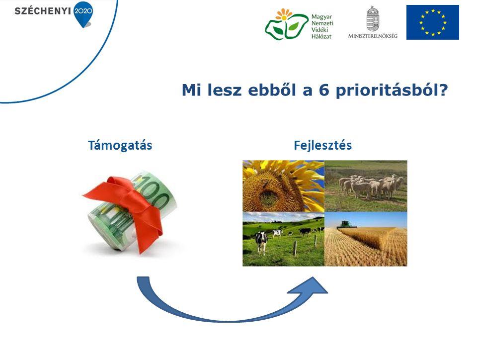 Vidéki térségek eszközei V.Alapvető szolgáltatások fejlesztése a vidéki térségekben (7.4.