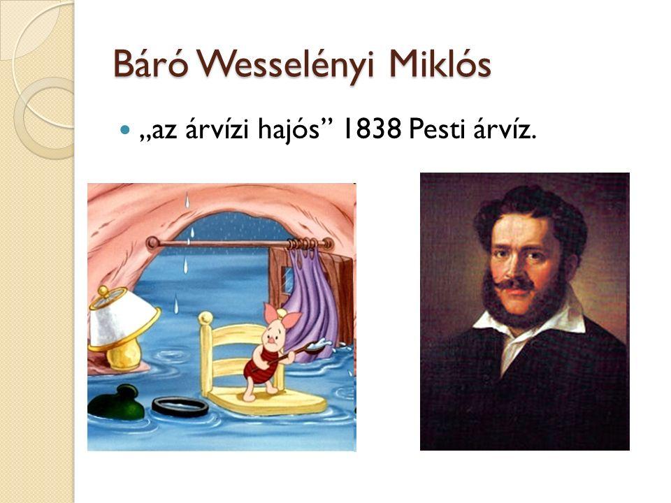 """Báró Wesselényi Miklós """"az árvízi hajós"""" 1838 Pesti árvíz."""