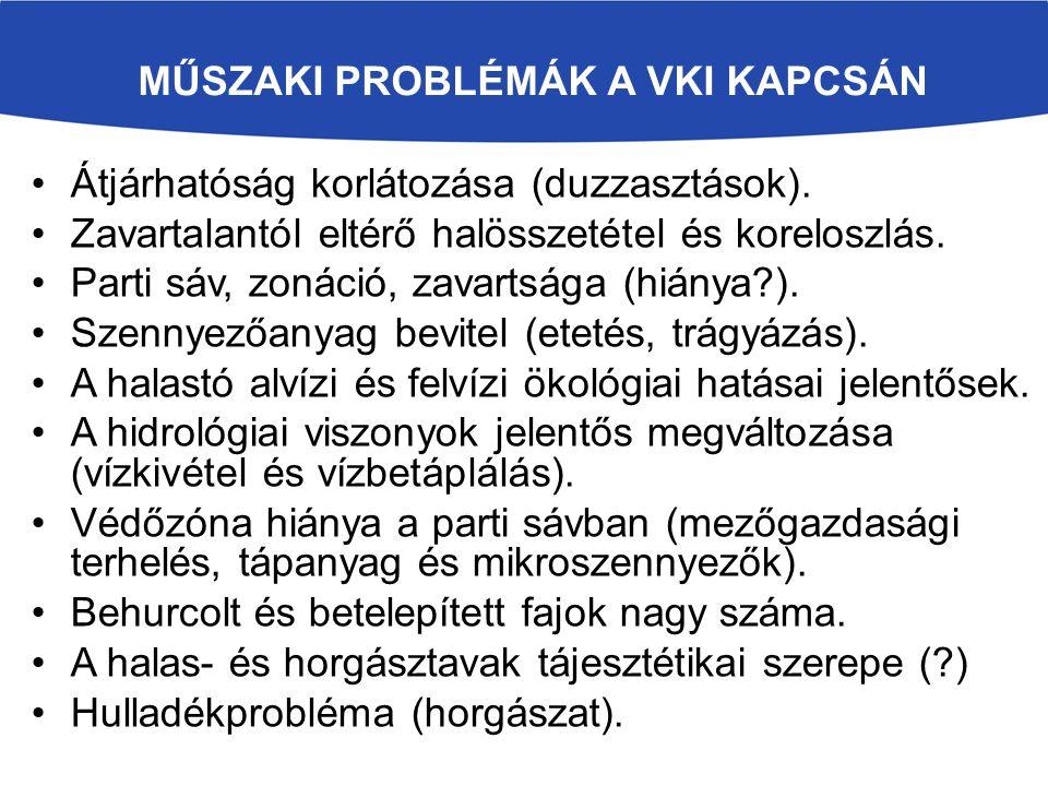 MŰSZAKI PROBLÉMÁK A VKI KAPCSÁN Átjárhatóság korlátozása (duzzasztások).