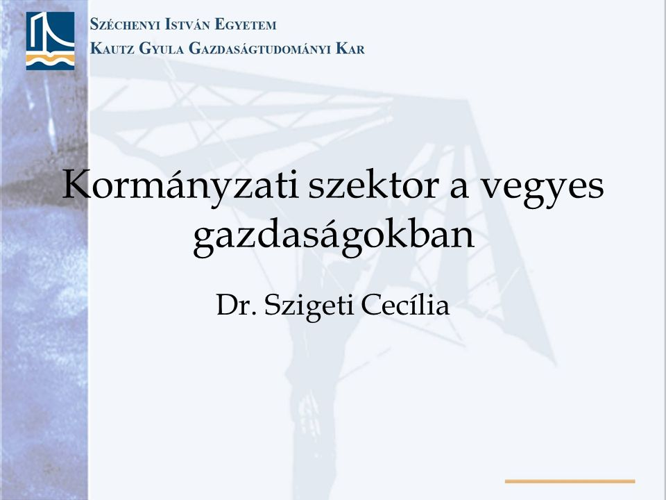 Kormányzati szektor a vegyes gazdaságokban Dr. Szigeti Cecília