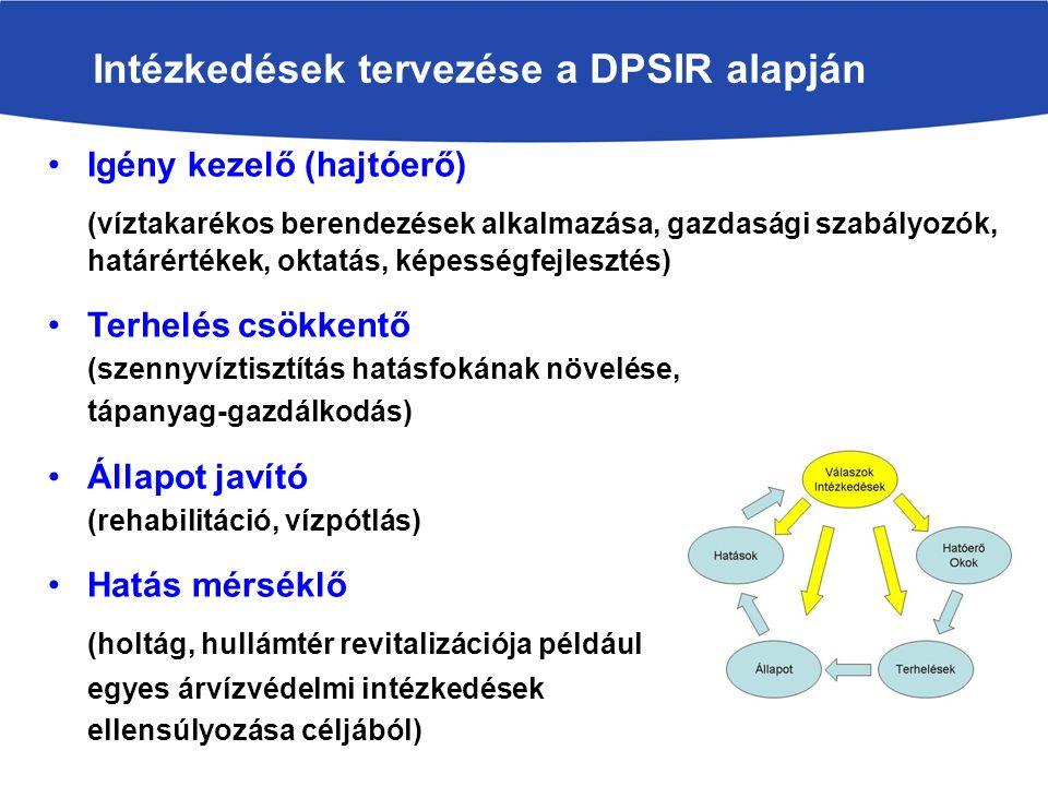 Igény kezelő (hajtóerő) (víztakarékos berendezések alkalmazása, gazdasági szabályozók, határértékek, oktatás, képességfejlesztés) Terhelés csökkentő (szennyvíztisztítás hatásfokának növelése, tápanyag-gazdálkodás) Állapot javító (rehabilitáció, vízpótlás) Hatás mérséklő (holtág, hullámtér revitalizációja például egyes árvízvédelmi intézkedések ellensúlyozása céljából) Intézkedések tervezése a DPSIR alapján