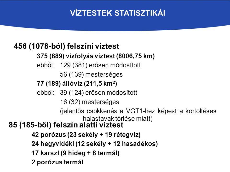 VÍZTESTEK STATISZTIKÁI 456 (1078-ból) felszíni víztest 375 (889) vízfolyás víztest (8006,75 km) ebből: 129 (381) erősen módosított 56 (139) mesterséges 77 (189) állóvíz (211,5 km 2 ) ebből: 39 (124) erősen módosított 16 (32) mesterséges (jelentős csökkenés a VGT1-hez képest a körtöltéses halastavak törlése miatt) 85 (185-ből) felszín alatti víztest 42 porózus (23 sekély + 19 rétegvíz) 24 hegyvidéki (12 sekély + 12 hasadékos) 17 karszt (9 hideg + 8 termál) 2 porózus termál