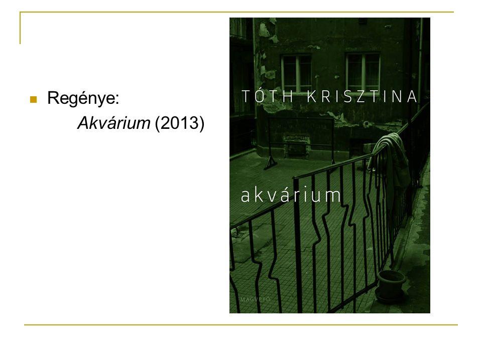 Regénye: Akvárium (2013)