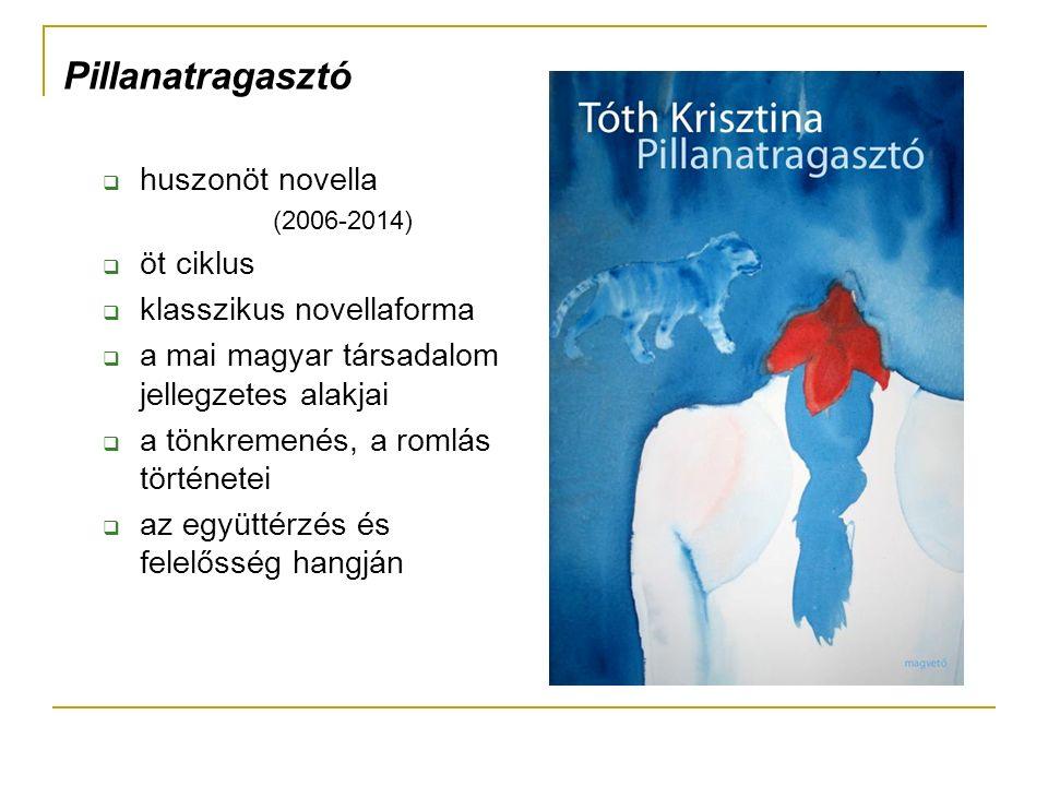 Pillanatragasztó  huszonöt novella (2006-2014)  öt ciklus  klasszikus novellaforma  a mai magyar társadalom jellegzetes alakjai  a tönkremenés, a