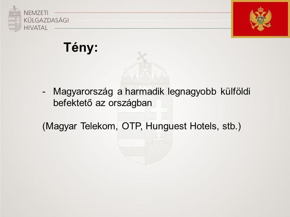 Tény: -Magyarország a harmadik legnagyobb külföldi befektető az országban (Magyar Telekom, OTP, Hunguest Hotels, stb.)