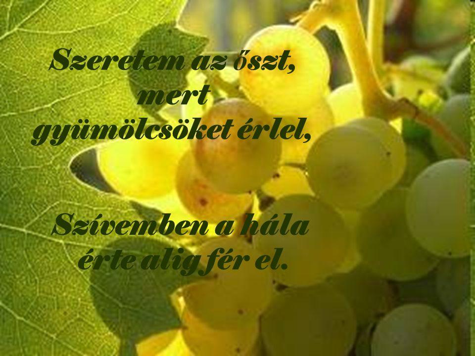 Szeretem az ő szt, mert gyümölcsöket érlel, Szívemben a hála érte alig fér el.