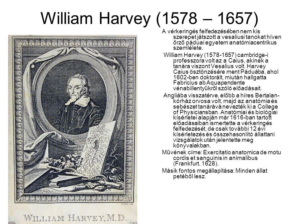 William Harvey (1578 – 1657) A vérkeringés felfedezésében nem kis szerepet játszott a vesaliusi tanokat híven őrző páduai egyetem anatómiacentrikus szemlélete.