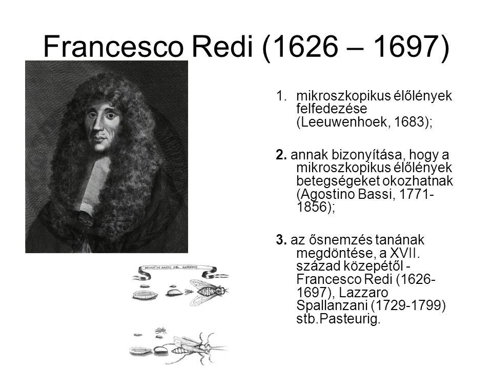 Francesco Redi (1626 – 1697) 1.mikroszkopikus élőlények felfedezése (Leeuwenhoek, 1683); 2.