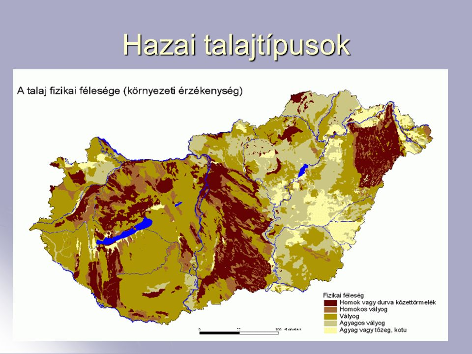 5 Hazai talajtípusok