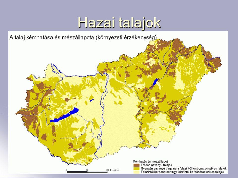 7 Hazai talajok
