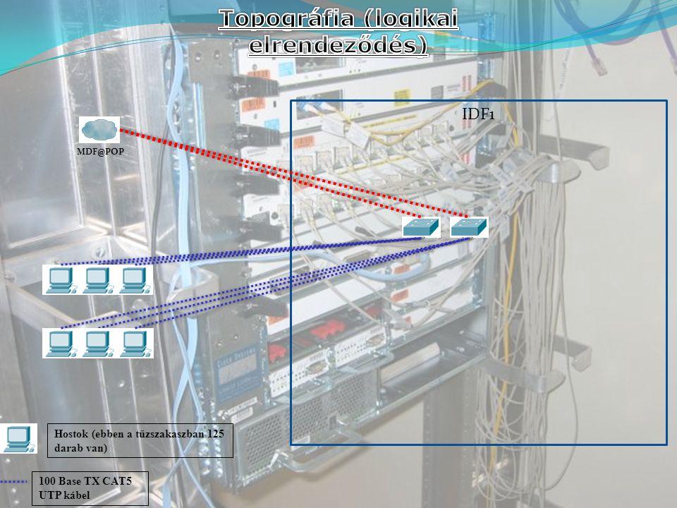 IDF1 MDF@POP 100 Base TX CAT5 UTP kábel Hostok (ebben a tűzszakaszban 125 darab van)