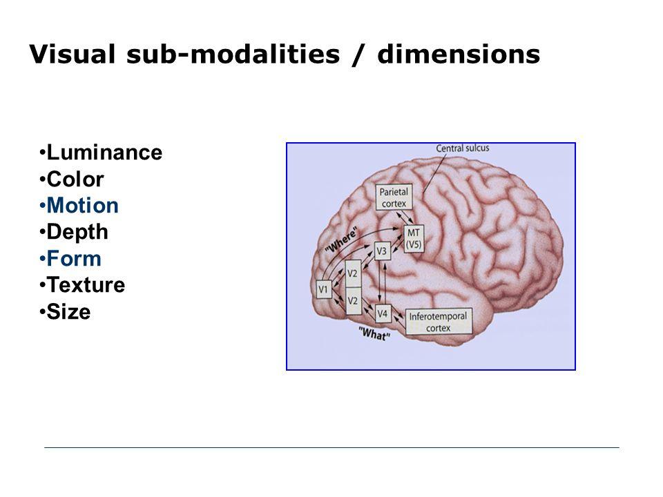 Vannak globális figyelmi mechanizmusok: a figyelmi szelekció hatása nem korlátozódik a figyelem középpontjában lévő, azaz explicite megfigyelt tárgyakra [Treue és Martinez Trujillo, 1999; Martinez Trujillo és Treue, 2004; Melcher et al, 2005].