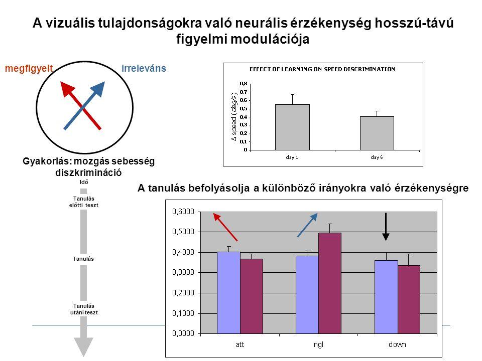 A vizuális tulajdonságokra való neurális érzékenység hosszú-távú figyelmi modulációja Gyakorlás: mozgás sebesség diszkrimináció megfigyeltirreleváns A