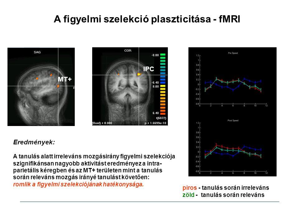 A figyelmi szelekció plaszticitása - fMRI MT+ IPC piros - tanulás során irreleváns zöld - tanulás során releváns Eredmények: A tanulás alatt irreleván