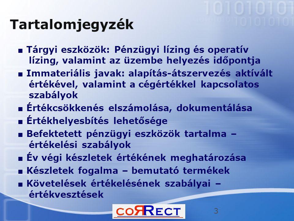 Tartalomjegyzék ■ Tárgyi eszközök: Pénzügyi lízing és operatív lízing, valamint az üzembe helyezés időpontja ■ Immateriális javak: alapítás-átszervezé