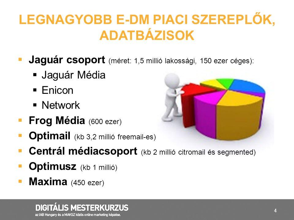4 LEGNAGYOBB E-DM PIACI SZEREPLŐK, ADATBÁZISOK  Jaguár csoport (méret: 1,5 millió lakossági, 150 ezer céges):  Jaguár Média  Enicon  Network  Fro