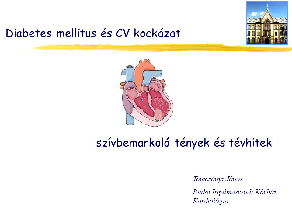 Diabetes mellitus és CV kockázat Tomcsányi János Budai Irgalmasrendi Kórház Kardiológia szívbemarkoló tények és tévhitek