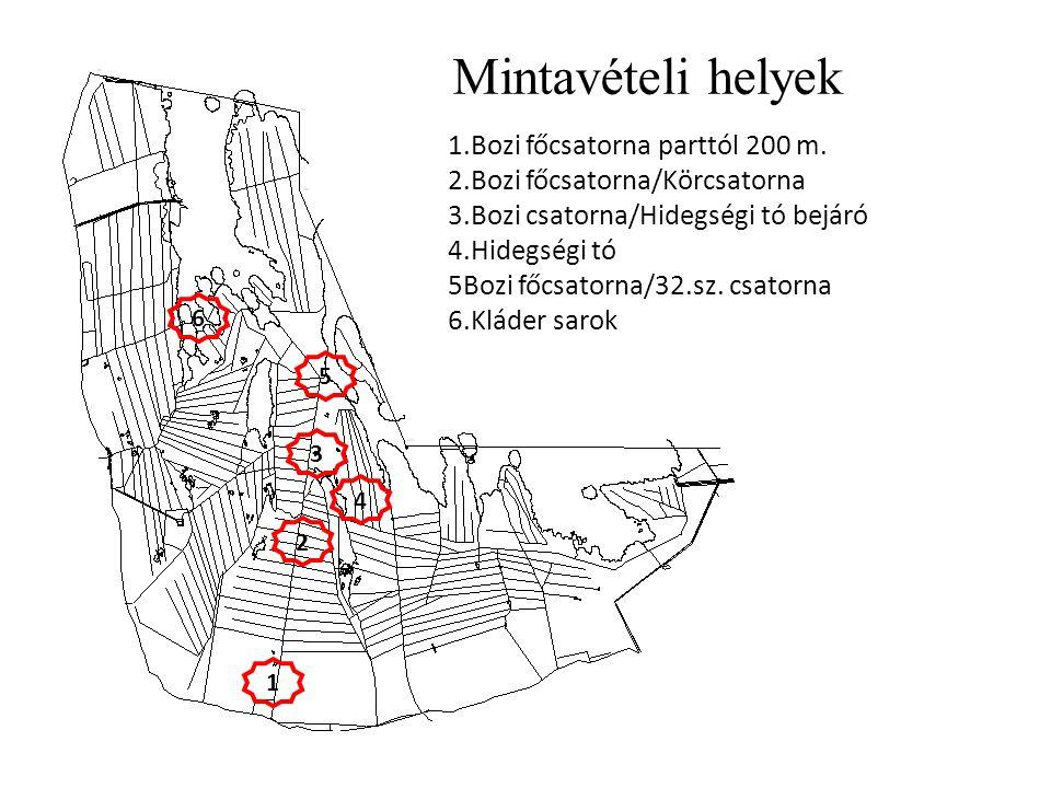 1 2 3 4 5 6 1.Bozi főcsatorna parttól 200 m. 2.Bozi főcsatorna/Körcsatorna 3.Bozi csatorna/Hidegségi tó bejáró 4.Hidegségi tó 5Bozi főcsatorna/32.sz.