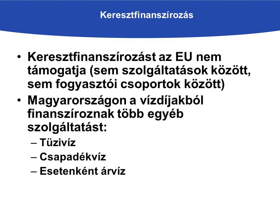 Keresztfinanszírozás Keresztfinanszírozást az EU nem támogatja (sem szolgáltatások között, sem fogyasztói csoportok között) Magyarországon a vízdíjakból finanszíroznak több egyéb szolgáltatást: –Tüzivíz –Csapadékvíz –Esetenként árvíz
