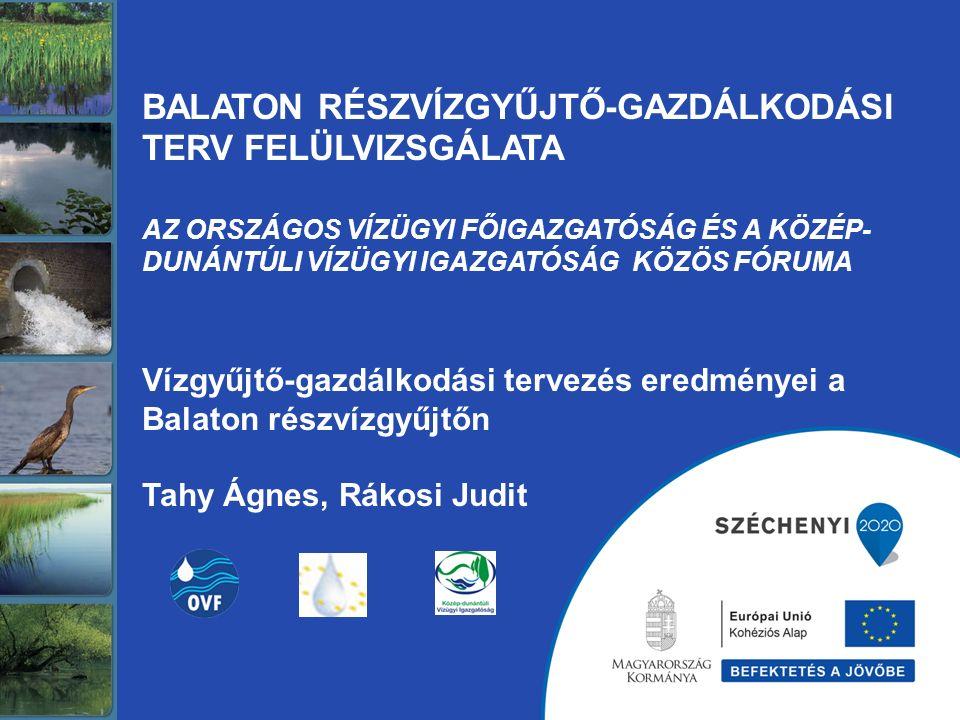 Balaton részvízgyűjtő 5 765 km 2 (a teljes részvízgyűjtő Magyarországon) 350 ezer lakos 270-300 ezer üdülő 298 település, ebből 5 nagy város (Siófok nem) - a kiemelt üdülőkörzet: 179 település 4 megye, 3 régió 2 tervezési alegység 3 vízügyi igazgatóság Közép-dunántúli Vízügyi Igazgatóság (Székesfehérvár) Hajtóerők 1.: turizmus és településfejlesztés Hajtóerők 2.: mezőgazdaság (szőlő, hal) és éghajlatváltozás Hajtóerők 3.: ipar és bányászat