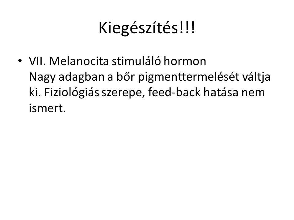 Kiegészítés!!! VII. Melanocita stimuláló hormon Nagy adagban a bőr pigmenttermelését váltja ki. Fiziológiás szerepe, feed-back hatása nem ismert.