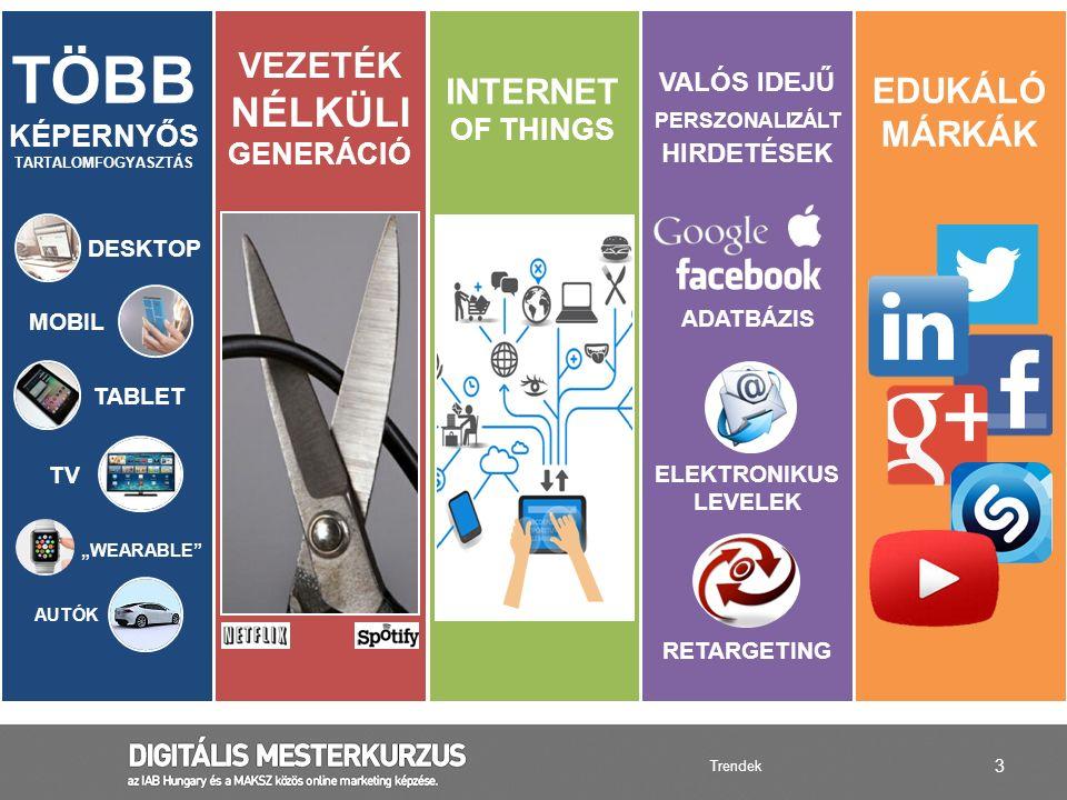4 INTERNET ELÉRÉS AZ UNIÓ ORSZÁGAIBAN Forrás: Internetwordstats.com Digitális helyzetkép