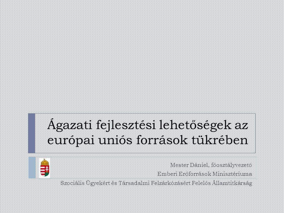 Ágazati fejlesztési lehetőségek az európai uniós források tükrében Mester Dániel, főosztályvezető Emberi Erőforrások Minisztériuma Szociális Ügyekért és Társadalmi Felzárkózásért Felelős Államtitkárság