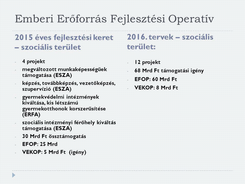 Emberi Erőforrás Fejlesztési Operatív - 12 projekt - 68 Mrd Ft támogatási igény - EFOP: 60 Mrd Ft - VEKOP: 8 Mrd Ft 2015 éves fejlesztési keret – szociális terület 2016.
