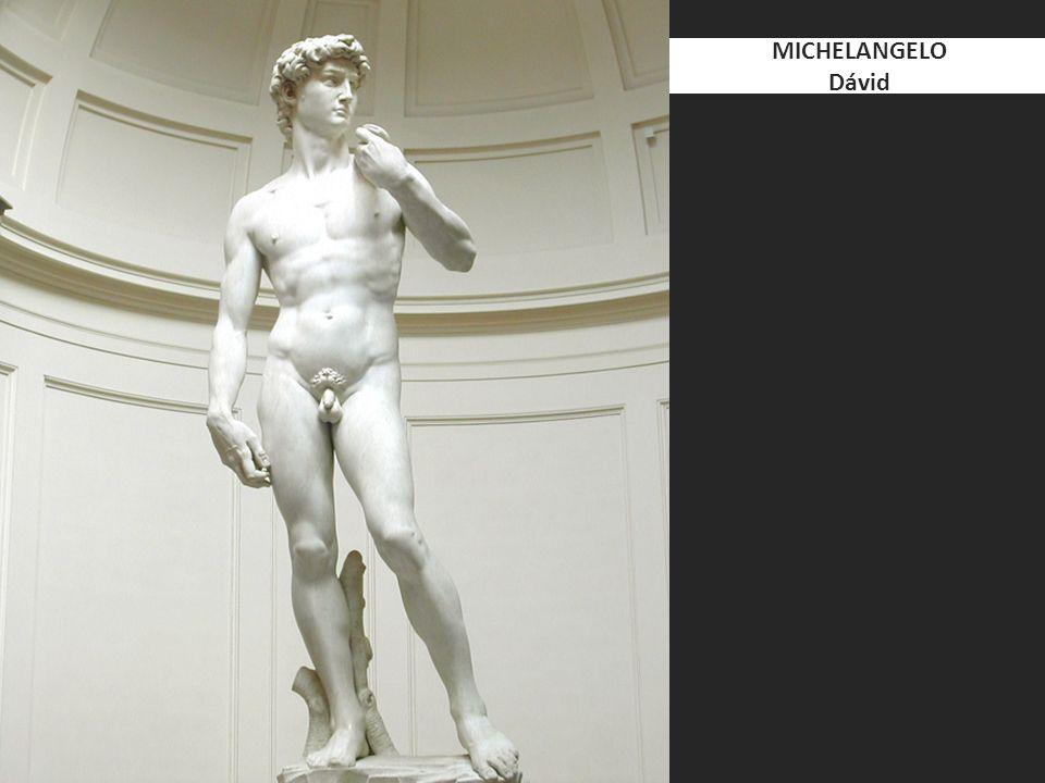 MICHELANGELO Dávid