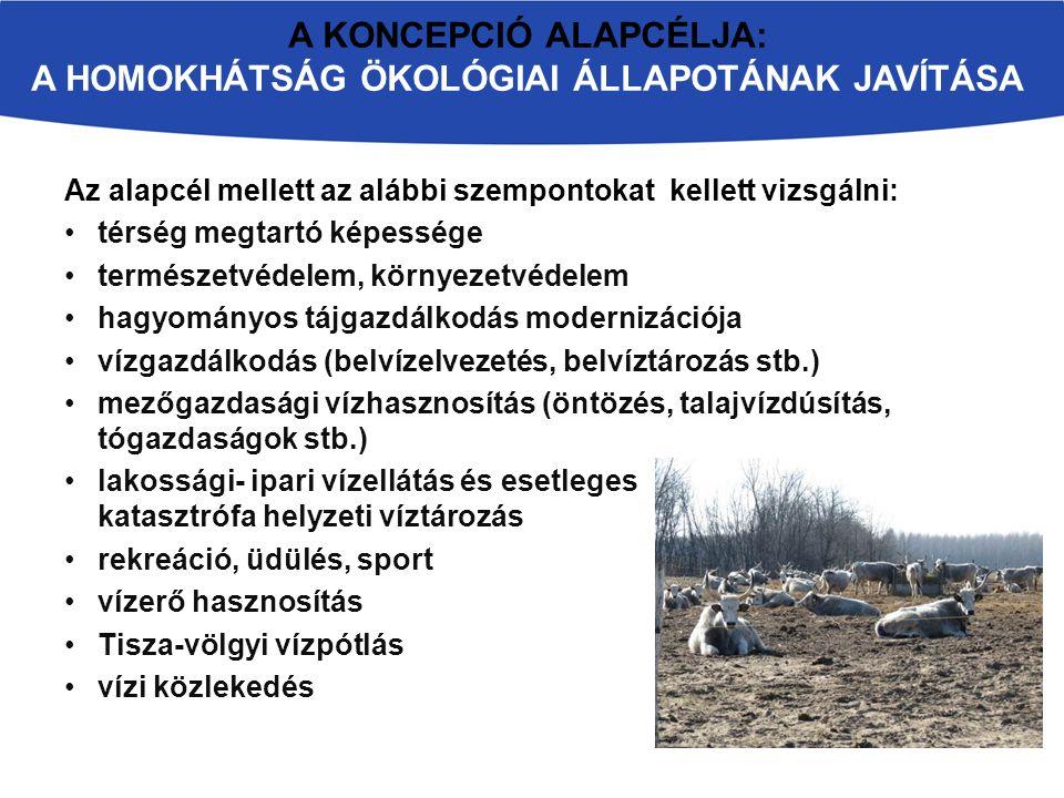 Vizsgálandó terület = Homokhátság: az Alföld Duna-Tisza közötti része, Budapest és Szeged között egy 120-150 km hosszú és mintegy 90 km szélességű téglalap alakú terület A két folyó közének közepét a magas hátság foglalja el, a hátság északi és déli vége magasabb, a középső része nyeregszerűen behajlik A Homokhátság önálló beszivárgási egység, természetes talajvízkészlete kizárólag a csapadékból származik A Homokhátságnak természetes víz- folyásai nincsenek, vízrendszerét alap- vetően a mesterséges belvíz-levezető csatornák alkotják HOMOKHÁTSÁG LEGFONTOSABB VÍZGAZDÁLKODÁSI JELLEMZŐI