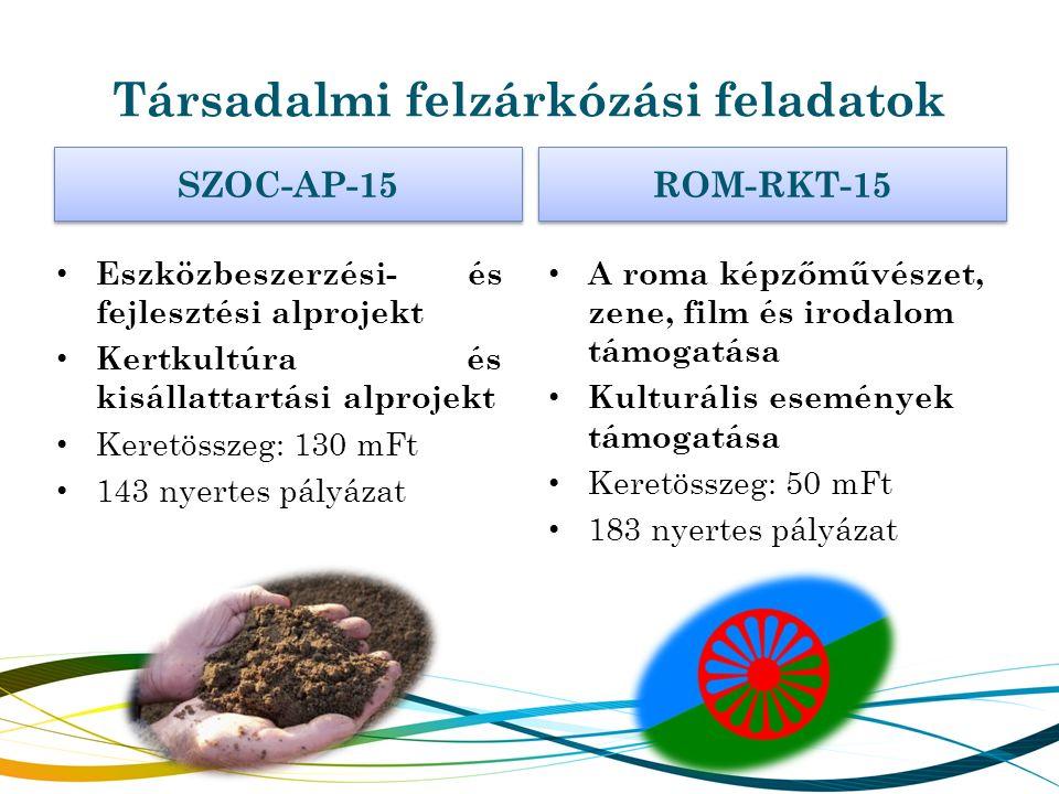 Társadalmi felzárkózási feladatok SZOC-AP-15 Eszközbeszerzési- és fejlesztési alprojekt Kertkultúra és kisállattartási alprojekt Keretösszeg: 130 mFt