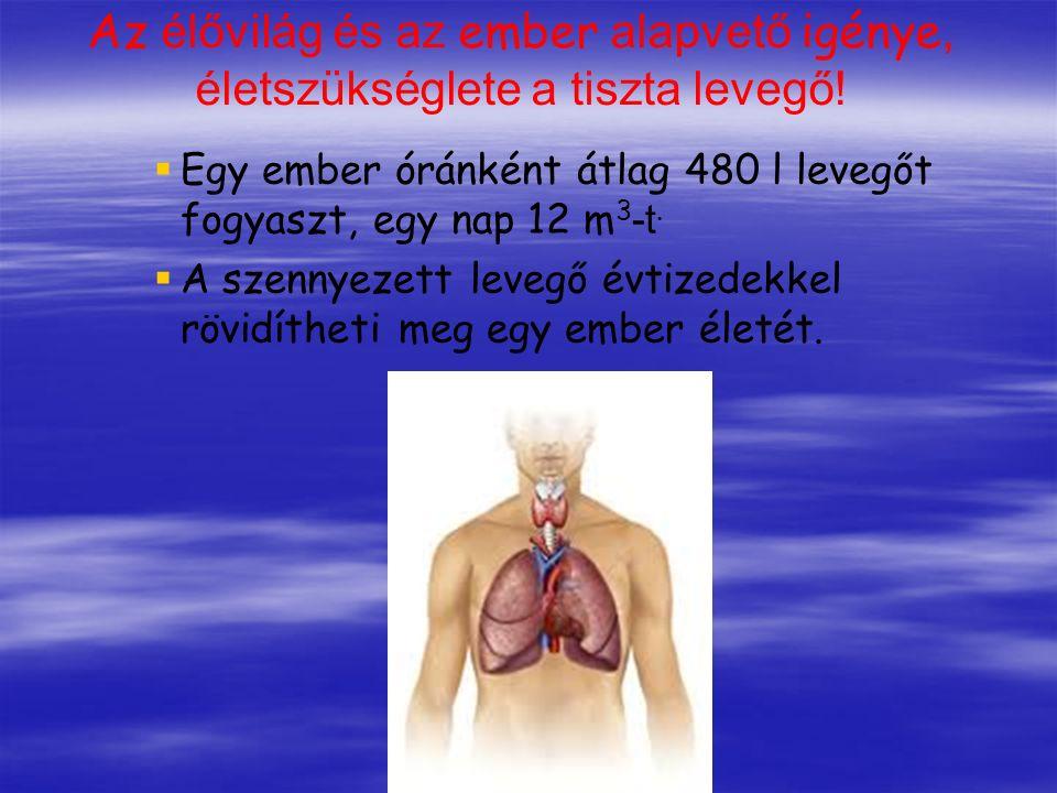 Az élővilág és az ember alapvető igénye, életszükséglete a tiszta levegő!   Egy ember óránként átlag 480 l levegőt fogyaszt, egy nap 12 m 3 -t.  