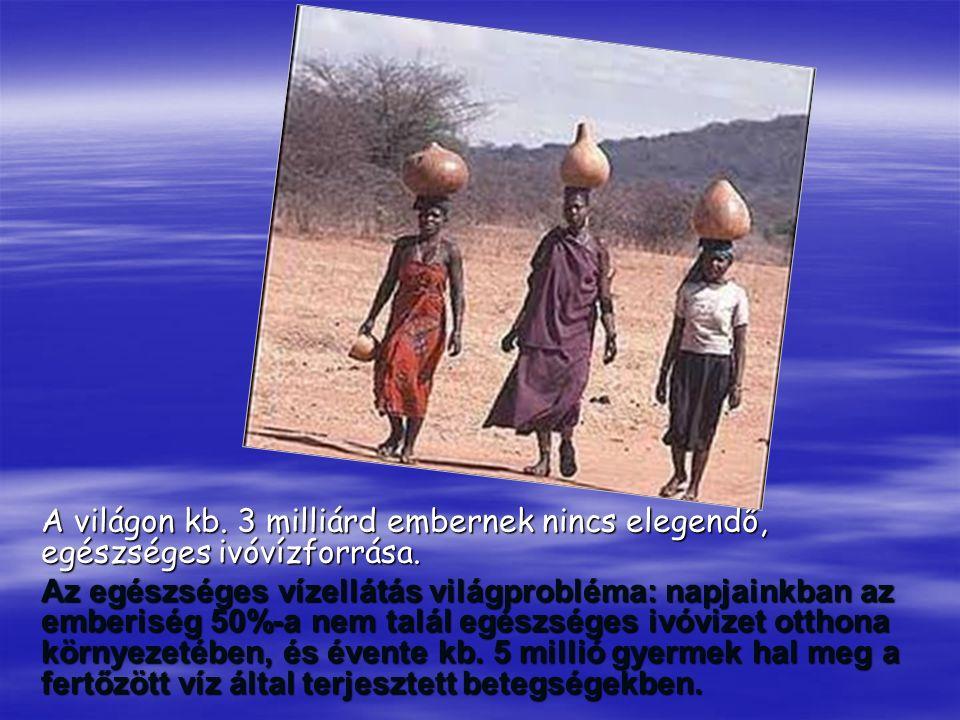 A világon kb. 3 milliárd embernek nincs elegendő, egészséges ivóvízforrása. Az egészséges vízellátás világprobléma: napjainkban az emberiség 50%-a nem