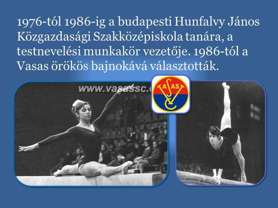 1976-tól 1986-ig a budapesti Hunfalvy János Közgazdasági Szakközépiskola tanára, a testnevelési munkakör vezetője. 1986-tól a Vasas örökös bajnokává v