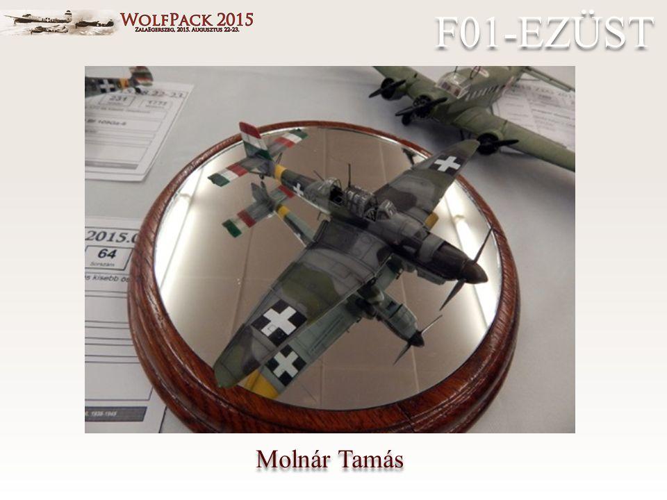 Molnár Tamás F01-EZÜST