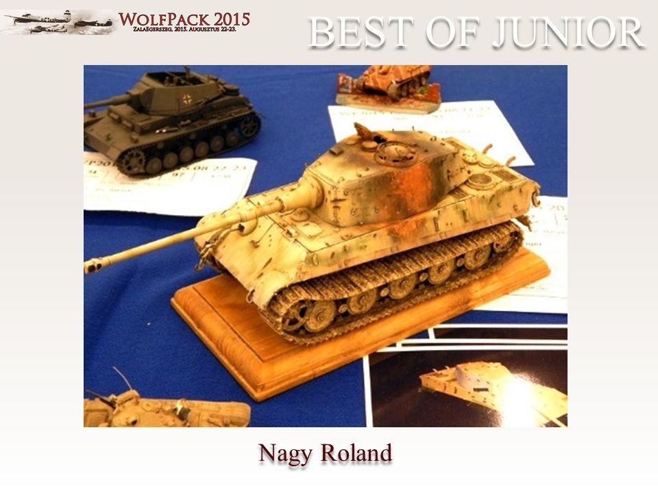 Nagy Roland BEST OF JUNIOR